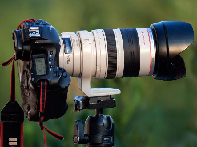 写真撮影・フリーライター